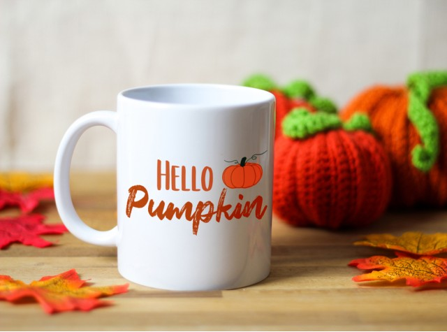 Hello Pumpkin Ceramic Mug | Valley Mill